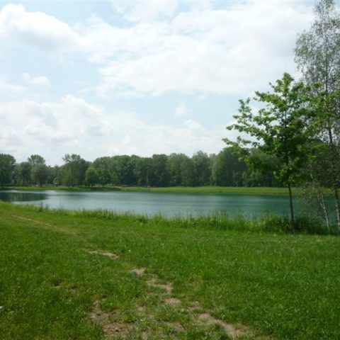 Liegewiese Seeblick